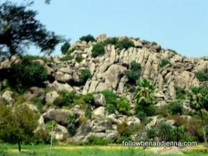 Tiruvannamalai surrounding area