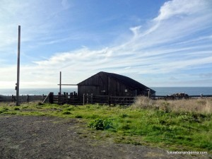 Barn along Northern California coast