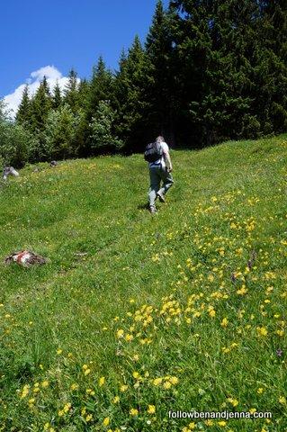 Near Chuenigsbargli - Adelboden