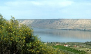 Israel: Visiting the wine country of Galilee